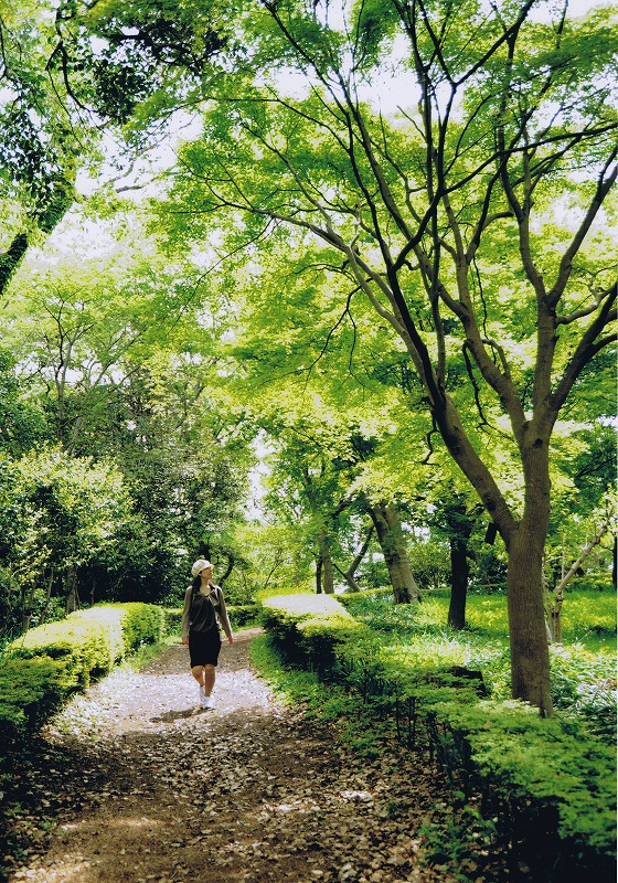 吾妻山公園の散策路