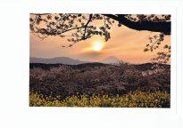 【準特選・春】霞む夕日の春景色
