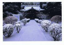 【佳作・冬】静寂な社