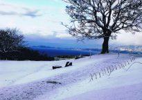 【佳作・冬】雪の朝