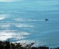 第22回にのみや観光フォトコンテスト 【入選】 【入選】「輝く海」玉置 正(二宮町)